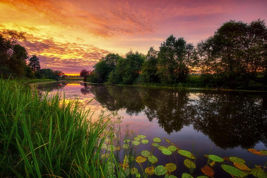 Estonya'dan doğa manzarası