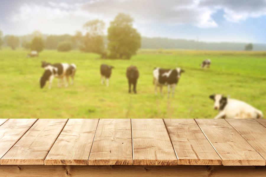 Masayı Kim Keşfetti ?